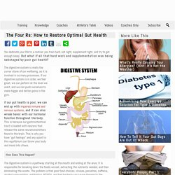The Four Rs: How to Restore Optimal Gut Health