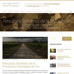 Résultats Sombres de la Production Mondiale de Vin