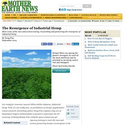 The Resurgence of Industrial Hemp
