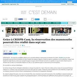 Grâce à CRISPR-Cas9, la résurrection des mammouths pourrait être réalité dans sept ans
