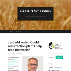 Just add water: Could resurrection plants help feed the world?