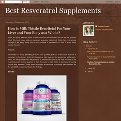 How is Milk Thistle Beneficial For Your Liver and Your Body as a Whole