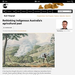 Rethinking Indigenous Australia's agricultural past - Bush Telegraph
