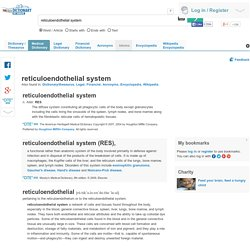 reticuloendothelial system - definition of reticuloendothelial system by Medical dictionary