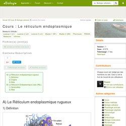 Le réticulum endoplasmique - Cours de biologie, sur eBiologie
