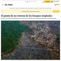 El punto de no retorno de los bosques tropicales