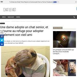 Une dame adopte un chat senior, et retourne au refuge pour adopter également son vieil ami