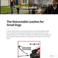 The Retractable Leashes for Small Dogs – Ultra Leash