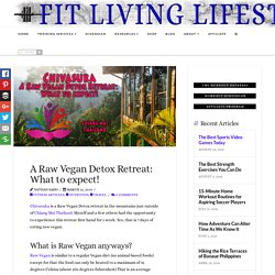 A Raw Vegan Detox Retreat: What to expect! - Fit Living Lifestyle