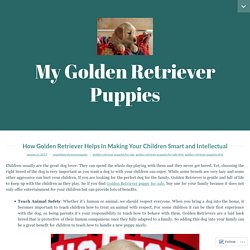 How Golden Retriever Helps In Making Your Children Smart and Intellectual – My Golden Retriever Puppies