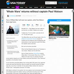 'Whale Wars' returns without captain Paul Watson