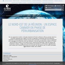 Le nord-est de La Réunion : un espace cannier en phase de périurban