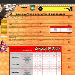 www.reunionislandguns.com : les différents types de munitions pour arme à canon lisse
