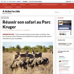 Réussir son safari au Parc Kruger - A ticket to ride