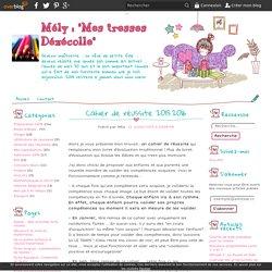"""Cahier de réussite 2015.2016 - Mély : """"Mes tresses Dézécolle"""""""