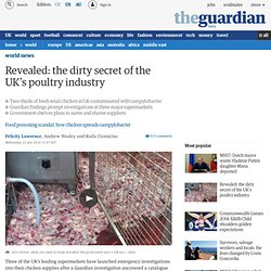 Revealed: the dirty secret of the UK's poultry industry