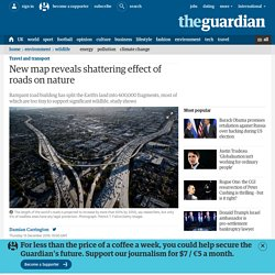 New map reveals shattering effect of roads on nature