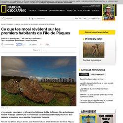Les moai de l'île de Pâques