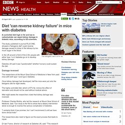 Diet 'can reverse kidney failure' in mice with diabetes