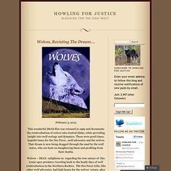 Wolves, Revisting The Dream….