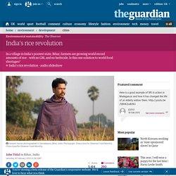 India's rice revolution