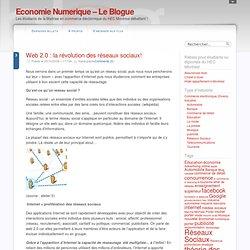 Web 2.0 : la révolution des réseaux sociaux!
