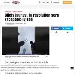 (1) Gilets jaunes: la révolution sera Facebook-livisée