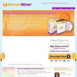Keyword Winner - Premium SEO Wordpress Plugin