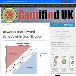 Rewards and Reward Schedules in Gamification - Andrzej's Blog