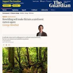 Rewilding will make Britain a rainforest nation again