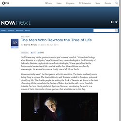 The Man Who Rewrote the Tree of Life — NOVA Next