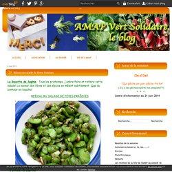 Rfissa ou salade de fèves fraîches - Le blog de vertsolidaire