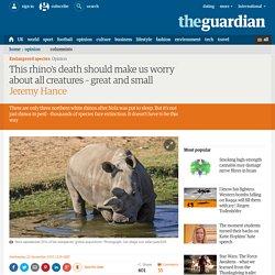 Northern White Rhino Died