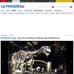 Lyon : dans les entrailles du Musée des Confluences