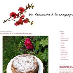 Fan de rhubarbe : le moelleux épicé de Jamie O.