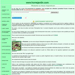 Rhubarbe ou rheum rhaponticum, fiche technique complète
