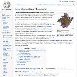Acide ribonucléique ribosomique