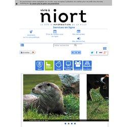 Les richesses des marais de Galuchet et La Plante : Mairie de Niort