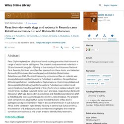 MEDICAL AND VETERINARY ENTOMOLOGY 03/11/18 Fleas from domestic dogs and rodents in Rwanda carry Rickettsia asembonensis and Bartonella tribocorum