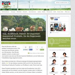 Soja, Rindfleisch, Palmöl: EU importiert massenhaft Produkte, für die Regenwa...