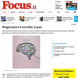 Ringiovanire il cervello: si può - Focus.it