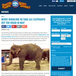 Ringling Circus Retiring Its Elephants