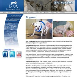 Dermatology for Animals - Part 1