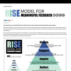 RISE Model - Peer Feedback - el Wray Design