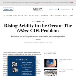 Rising Acidity in the Ocean: The Other CO2 Problem