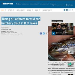 Rising pH a threat to wild and hatchery trout in B.C. lakes