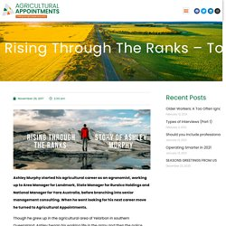 Rising Through the Ranks – to Find the Perfect Role