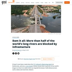 Dam it all: More than half of the world's long rivers are blocked by infrastucture