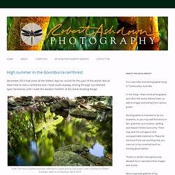 www.robertashdown.com/blog/