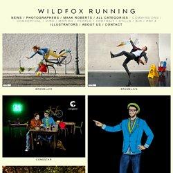 Maak Roberts; Photographers; wildfox running